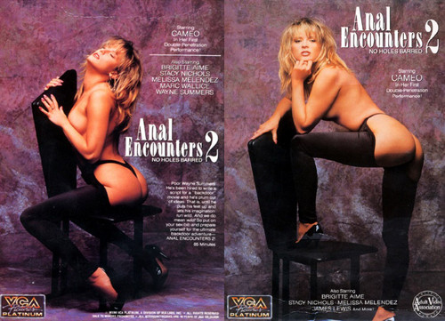 Anal Encounters 2 (1991)