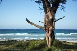 Elly-Tree-by-Sea--z6taqnsdpo.jpg
